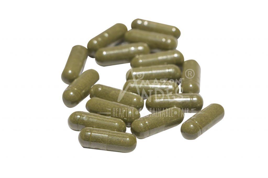 graviola en capsulas