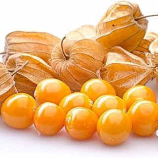 organic goldenberry supplier