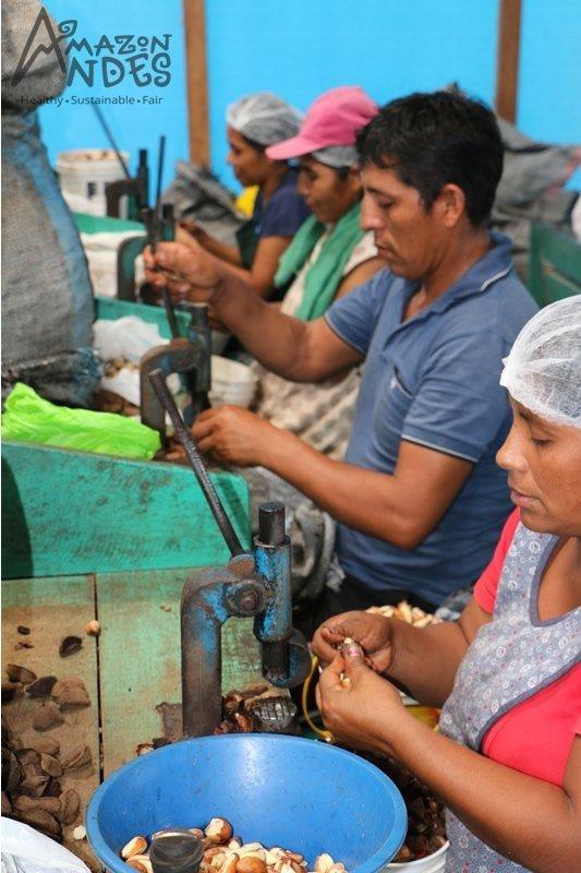 brazilian nuts work