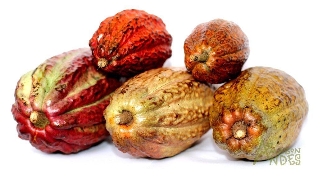 organic peruvian cacao