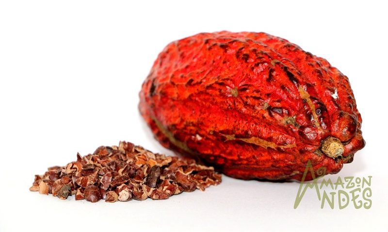 cacao nibs raw