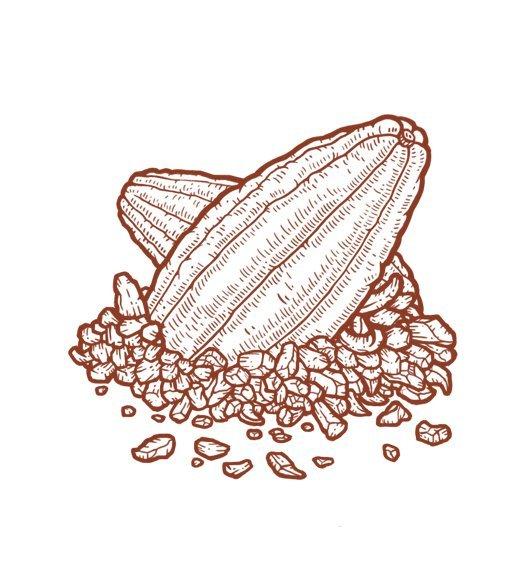 cacao_