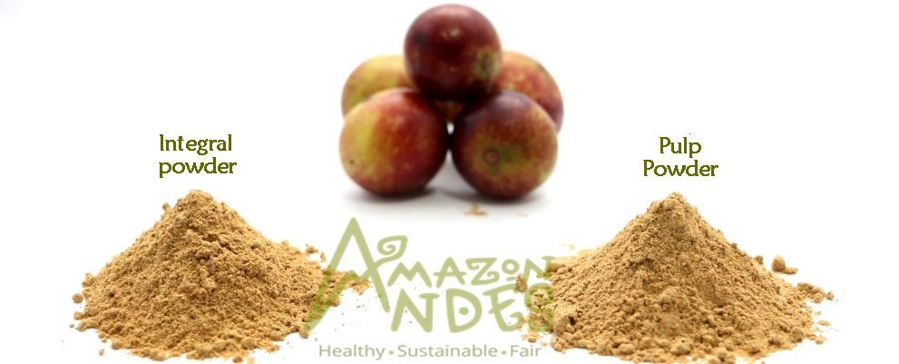 Camu camu powder supplier