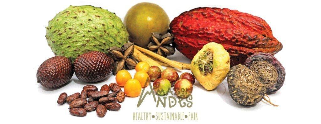 peruvian superfoods supplier